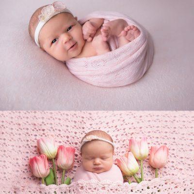 NJ Newborn Photographer | Katerina Zoe